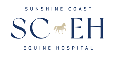 Sunshine Coast Equine Hospital